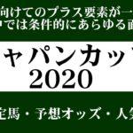 【ゼロ太郎】「ジャパンカップ2020」出走予定馬・予想オッズ・人気馬見解