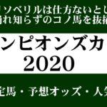【ゼロ太郎】「チャンピオンズカップ2020」出走予定馬・予想オッズ・人気馬見解