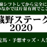 【ゼロ太郎】「武蔵野ステークス2020」出走予定馬・予想オッズ・人気馬見解