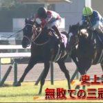 2020/11/3競馬ニュース 菊花賞はコントレイルが優勝 オッズマスターGPなど