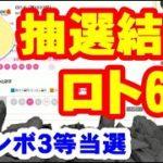ジャンボ3等当選!ロト6当たりかはずれかネット購入の結果!!