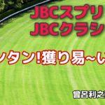 JBCスプリント&クラシックJpnI オッズ読み