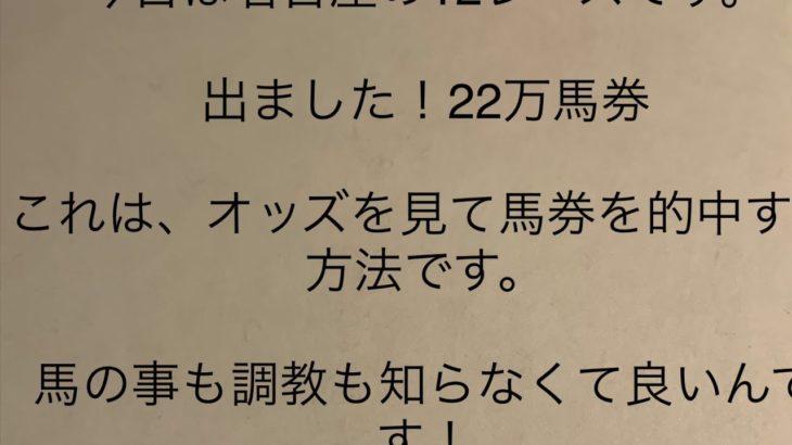 地方競馬 名古屋12レース ブロッコリー賞 12月10日 22万馬券 万馬券 オッズで分かる万馬券 当たる
