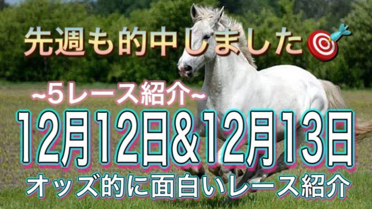 (競馬予想)今週のオッズ的に面白いレース(12月12日&12月13日)