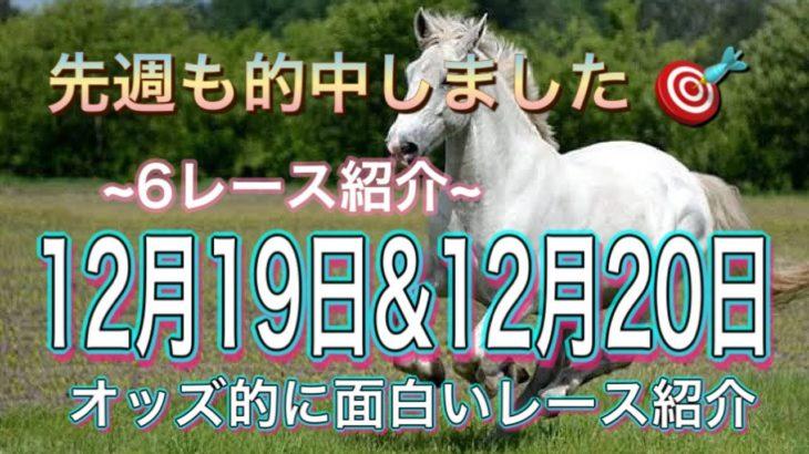 【競馬予想】今週のオッズ的に面白いレース(12月19日&12月20日)平場・重賞を予想!!