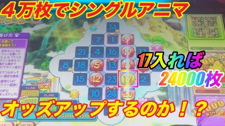 【アニマロッタ】17オッズアップで24000枚!?果たして何番の数字に入るのか!?