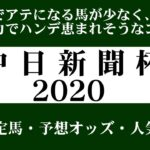【ゼロ太郎】「中日新聞杯2020」出走予定馬・予想オッズ・人気馬見解