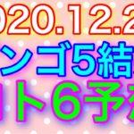 【2020.12.24】ビンゴ5結果&ロト6予想!