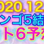 【2020.12.3】ビンゴ5結果&ロト6予想!