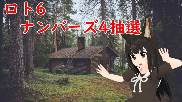 【雑談】ロト6・ナンバーズ4抽選枠