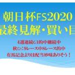 朝日杯FS2020最終見解・買い目