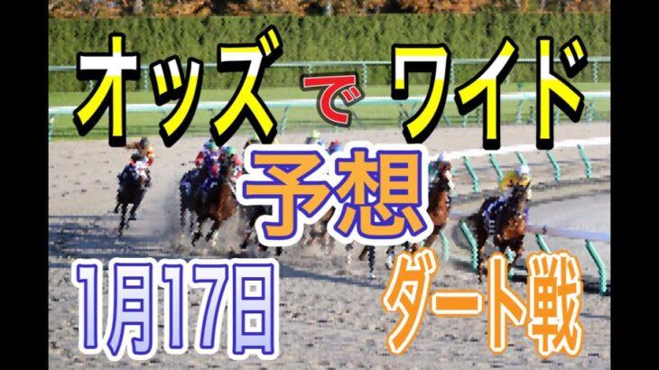 【競馬予想】1月17日 自己流のオッズ法とデータを使いダート戦だけを予想します。