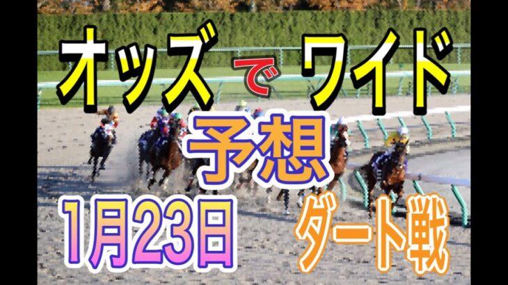 【競馬予想】1月23日 自己流のオッズ法とデータを使いダート戦だけを予想します。券種は1頭軸流しのワイドです。
