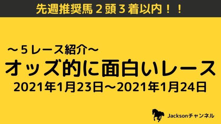 【競馬予想】今週のオッズ的に面白いレース(1月23日&1月24日)平場予想!! 5レース紹介 穴馬・相手になりそうな馬を紹介