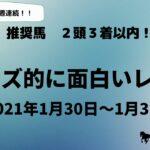 【競馬予想】今週のオッズ的に面白いレース(1月30日&1月31日)平場予想!! 5レース紹介 穴馬・相手になりそうな馬を紹介