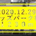 2020.12.29【園田競馬パドック】オッズパーク杯B2ほか