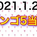 【2021.1.28】ビンゴ5当選&ロト6予想!