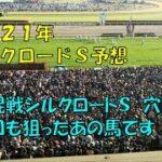 2121年 シルクロードステークス予想【大混戦オッズのシルクロードステークス 穴馬は前走も狙ったあの馬】