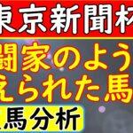 東京新聞杯2021年!単勝予想オッズ中穴人気の馬達を分析!叩き上げの馬発見