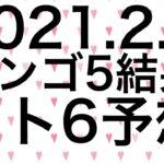 【2021.2.4】ビンゴ5結果&ロト6予想!