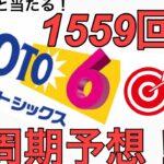 2021年2月11日【1559回】ロト6 予想動画。高額当選狙います!