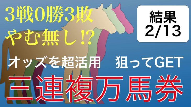 オッズを超活用狙ってGET三連複万馬券【2/13結果報告】