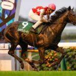 【共同通信杯 予想オッズ】GI・2着馬ステラヴェローチェが人気の中心(netkeiba.com) – Yahoo!ニュース