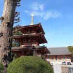 中野で ロト6を買って 中野町役場跡を 訪ねた。nakano