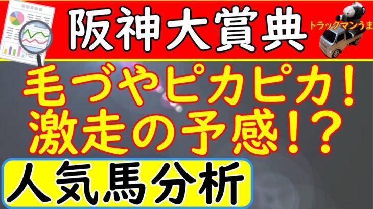 阪神大賞典2021年【競馬予想】予想オッズ①②③人気馬を大分析