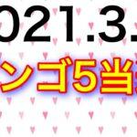 【2021.3.4】ビンゴ5当選&ロト6予想!