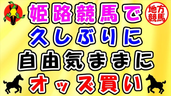 【地方競馬攻略】自由気ままにオッズ買い!姫路競馬攻略 2021.3/16姫路競馬 金沢競馬 楽天競馬