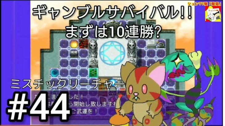 (ギャンブルサバイバル!!まずは10連勝?)【フリーゲーム】ミスチックリーチャー~Mystic Creature~    #44【シュンTV駿】【駿猫】