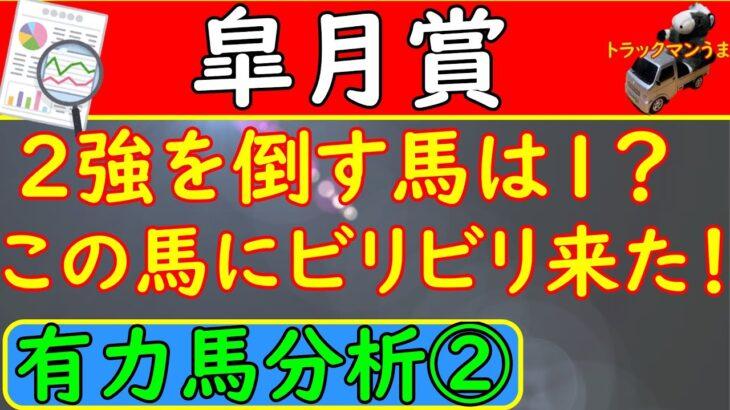 皐月賞2021年!予想オッズ④~⑥人気馬のデータ分析!【競馬予想】
