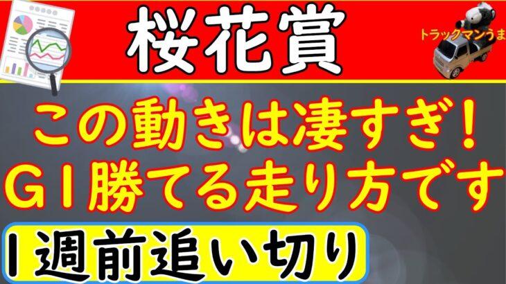 桜花賞2021年1週前追い切り!予想オッズ上位馬6頭を診断【競馬予想】