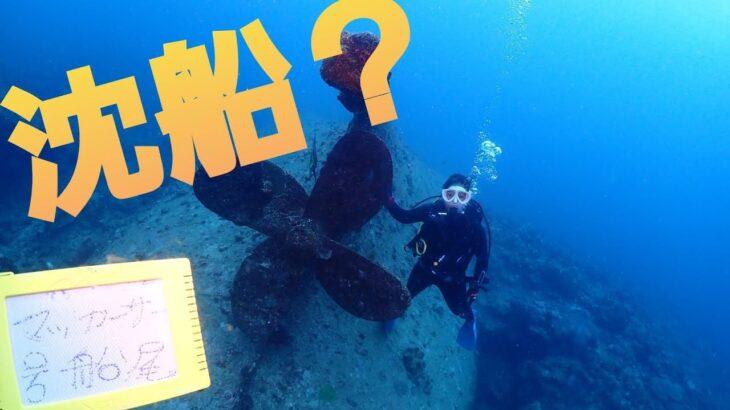 【近海ダイビング】ギャンブルダイブに沈船ダイブ??アルファダイブ