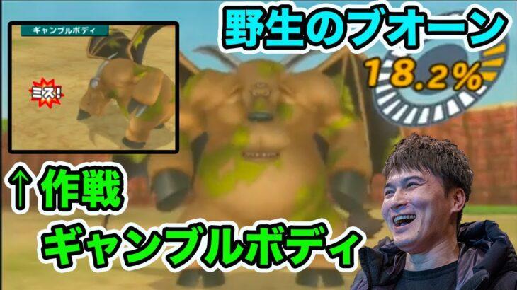 【加藤純一】ギャンブルボディ作戦で野生のブオーンのスカウトに挑戦するシーン