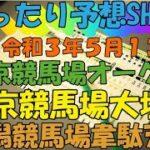 【競馬】ゆったり予想SHOW【公営ギャンブル】【JRA】オークス