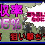 【競馬番組】11頭中、9.10番人気(単勝オッズ約100倍)から勝負したら回収率半端ないことに!安田記念、予想・勝負!
