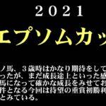 【ゼロ太郎】「エプソムカップ2021」出走予定馬・予想オッズ・人気馬見解