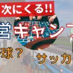 【合法的】新しい公営ギャンブルを考える【ラジオ】#24