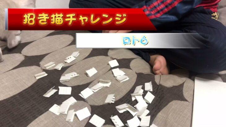 【招き猫!?】ロト6に挑戦!!
