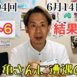 【月曜日企画】ロト6結果発表!また亀さんに遭遇の巻 2021年6月14日(月) 大丈夫だよシリーズ