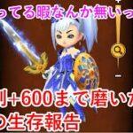 【星ドラ】ロト剣+600まで磨いた凡人の生存報告