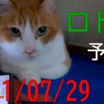 【ロト6】第1607回予想