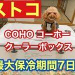 【コストコ】COHO コーホー クーラーボックス ロトモールド 55QT 52Lご紹介