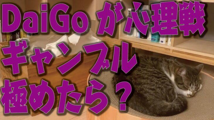 【音声のみ】DaiGoが心理戦のギャンブルを極めたら無双できるか?【メンタリストDaiGo 切り抜き】