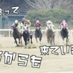 【オッズパーク】レース実況×EDM編