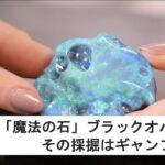 「魔法の石」ブラックオパール💎その採掘はギャンブル!?