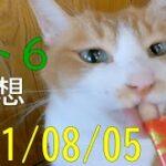 【ロト6】第1609回予想