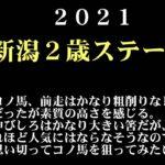 【ゼロ太郎】「新潟2歳ステークス2021」出走予定馬・予想オッズ・人気馬見解